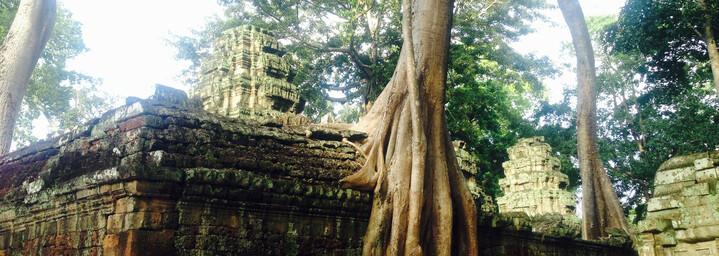 Ta Prohm Tempelkomplex, Siem Reap