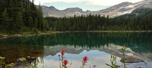 Top 10 Nationalparks weltweit