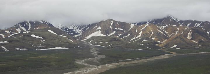 Alaska Reisebericht: Denali Nationalpark
