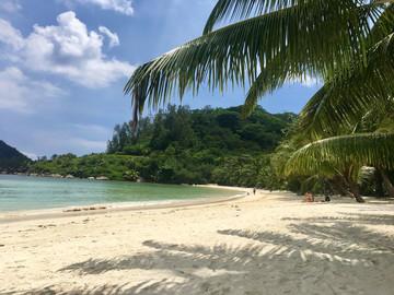 Reisebericht Seychellen: Strand des Constance Ephelia auf Mahé