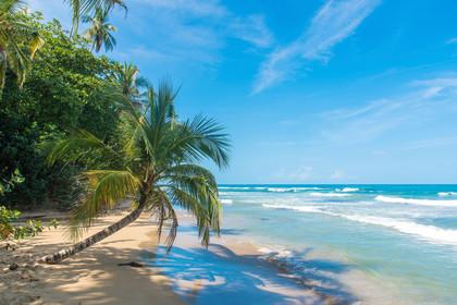 Playa Chiquita Puerto Viejo Costa Rica