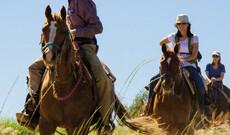 Ranch Abenteuer