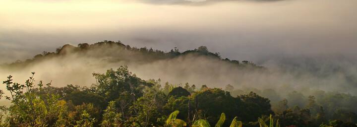 Landschaft im malaiischen Bundesstaat Sarawak auf der Insel Borneo