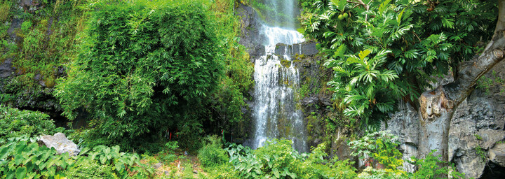 Wasserfall nahe Saint Paul La Réunion