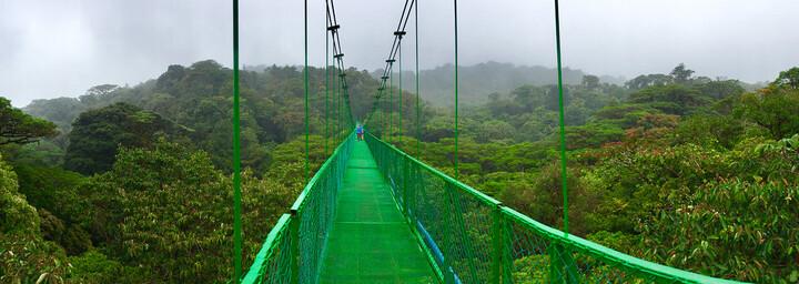 Hanging Bridges im Monteverde Nebelwald