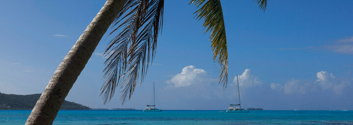 Bora Bora Dream - Katamaran in Landschaft Französisch Polynesiens