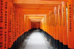 Fushimi Inari Tempel in Kyoto