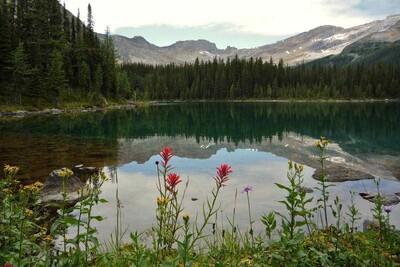Linda Lake im Yoho Nationalpark Kanada