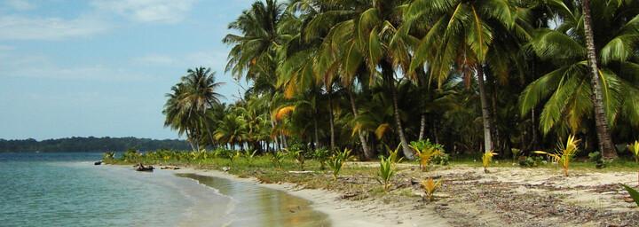 Strand von Bocas del Torro in Panama