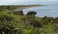 Kapiti Island Erlebnis