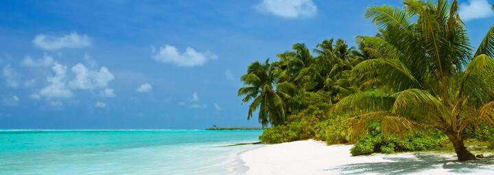 Strand, Palmen und Meer auf den Malediven