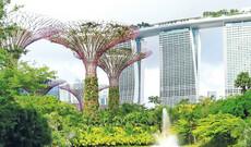 Mein Singapur - Ganz privat