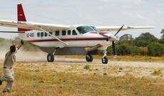 Tierparadies Botswana