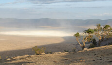 Ngorongoro & Lake Manyara