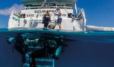 Pro Dive - 3 Tage PADI-Tauchkreuzfahrt  für Fortgeschrittene