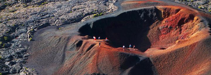 Krater Formica Leo La Reunion