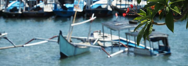 Traditionelles Boot & Frangipani Pflanze