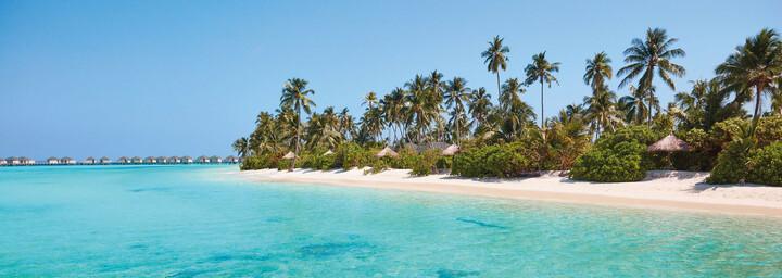 Amari Havodda Maldives - Strand & Meer