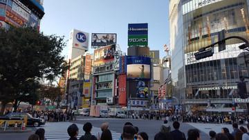 Reisebericht Japan - Kreuzung im Stadtbezirk Shibuya in Tokyo
