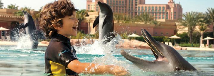Dolphin Bay Atlantis The Palm Dubai