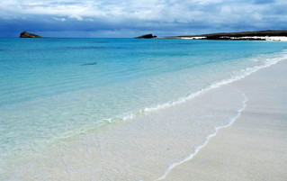 Galápagos Reisebericht - Gardener Bucht auf Española