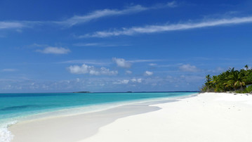 Malediven Reiseberichte: Weißer, palmengesäumter Sandstrand auf den Malediven
