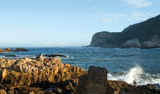7 Tage Garden Route
