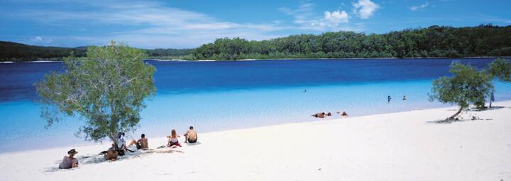 Mc Kenzie See Fraser Island