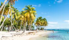 Martinique entdecken