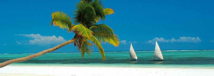 Sansibar Strand mit Palmen und Booten