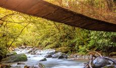 Natur pur Costa Rica
