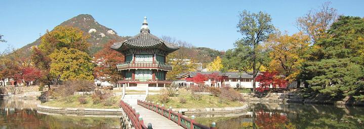 Garten in Seoul