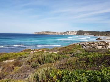 Australien Reisebericht - Strand auf Kangaroo Island