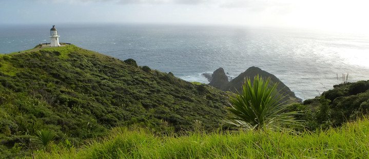 Neuseeland Reisebericht - Leuchtturm am Cape Reinga