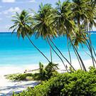 Traumziel Barbados