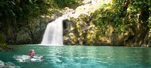 Tobago entdecken