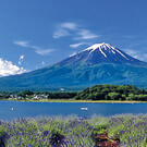 Heiliger Mount Fuji & Kultur