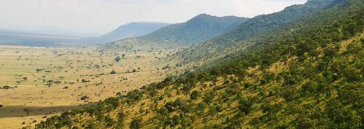 Reisebericht Kenia - Masai Mara Reservat