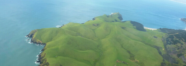 Neuseeland Nordinsel - Ausblick während des Rundfluges über Bay of Islands