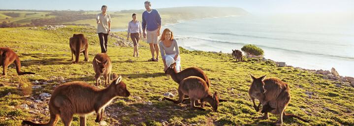 Kangaroo Island Familie