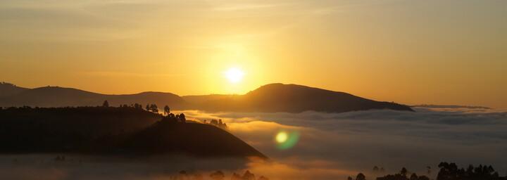 Sonnenaufgang Bwindi Impenetrable Forest