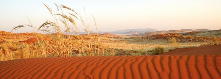 Nambi Wüste