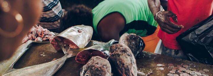 Fischmarkt in Victoria, Seychellen