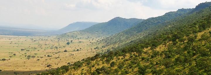 Die Weite der Masai Mara