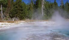 Yellowstone Winter-Erlebnis