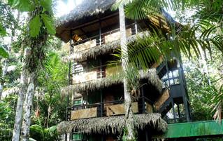 Ecuador Reisebericht - Tapir Lodge