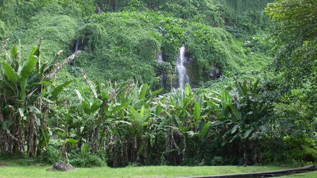 La Réunion Reisebericht: Bucht Anse de Cascades
