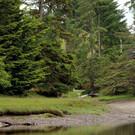 Haida Gwaii entdecken