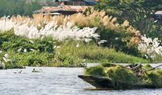 Facettenreiches Myanmar mit Flusskreuzfahrt