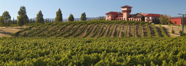 Außenansicht eines Weingutes in Marlborough
